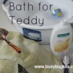 bath teddy